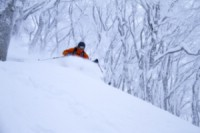Somewhere on the island of Honshu. Lars Olof Elfversson gets her need for speed. The children stay at home with the grandparents when Mom and Dad are on a powder trip in Japan. Photo: Andreas Bengtsson