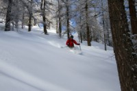 John Thafvelin skiing the trees in Italy. Feb 10 2010. Photo: Andreas Bengtsson