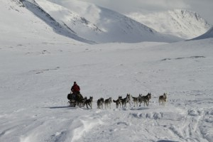 Dog sledge bringing our food and equipment.  9th April 2010. Photo: Magnus Strand